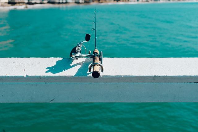Les bienfaits de la pêche