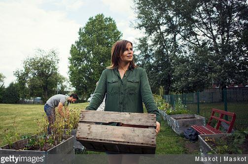 tout-savoir-sur-la-permaculture-jardin-jardinage-comprendre